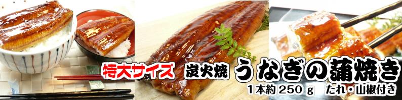 ふっくら美味しい鰻の蒲焼き